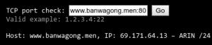 输入域名+端口进行检测
